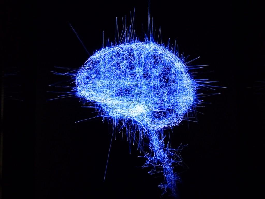 Cerveau de l'Homo cyberneticus ? Expo « Artistes et robots » Brain 2009 Pascal Haudressy, Grand Palais 2018