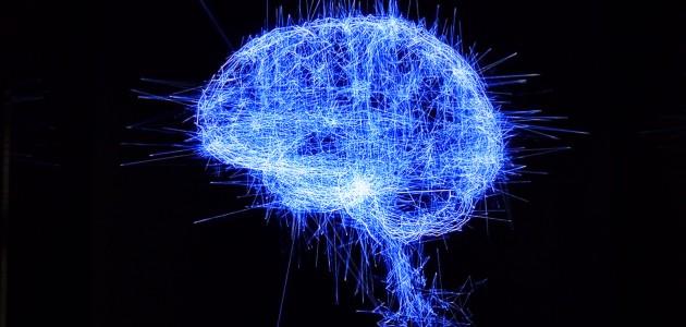 Cerveau de l'Homo cyberneticus ? Exposition « Artistes et robots » Grand Palais, avril 2018